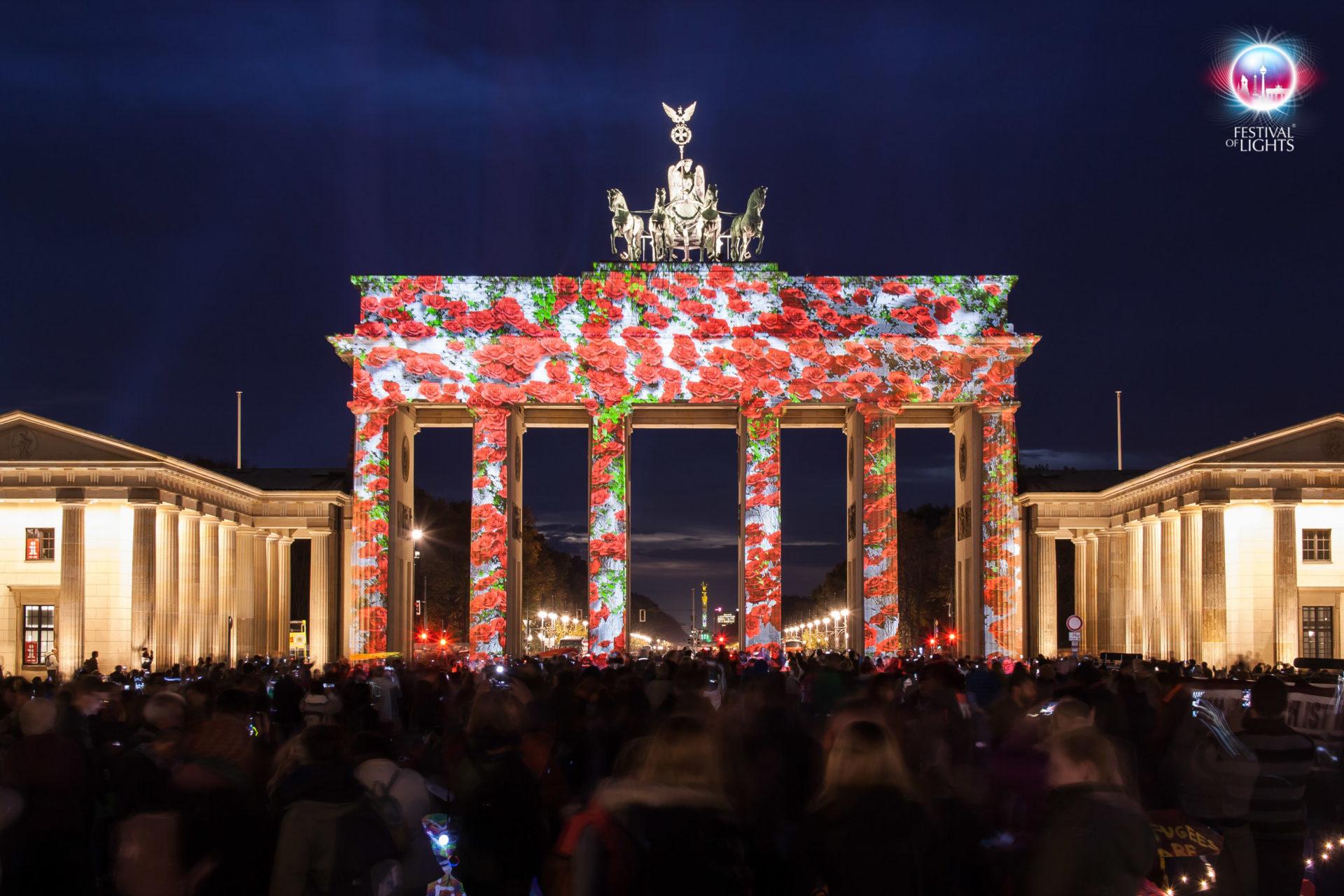 Brandenburger Tor - Rosen - 2013