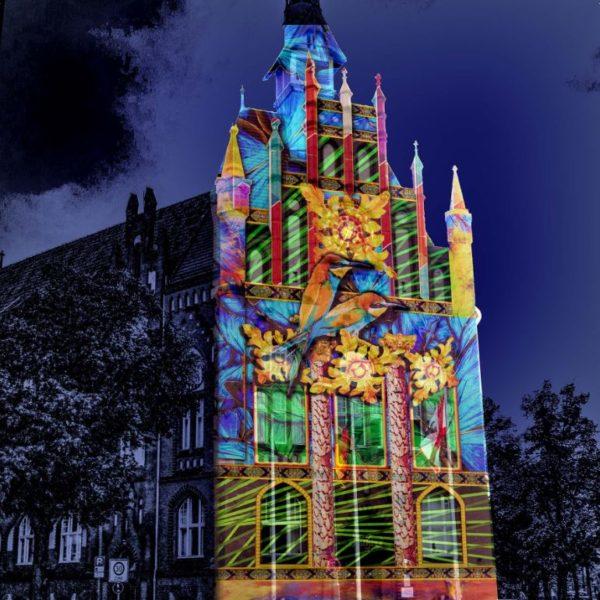 Programm - Festival of Lights