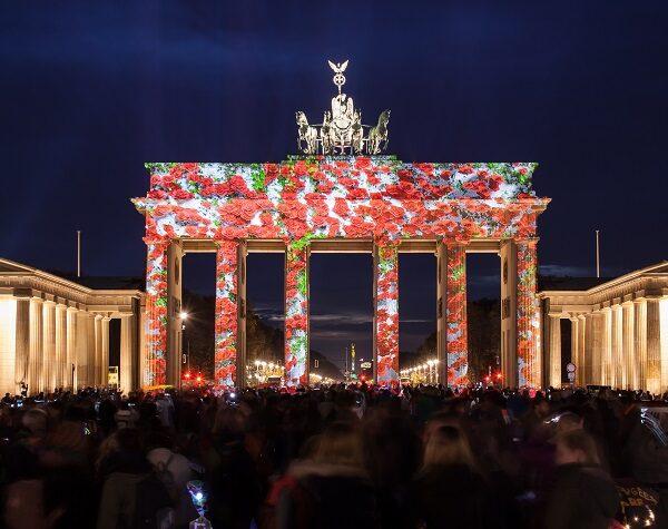 Brandenburger Tor - Rosen